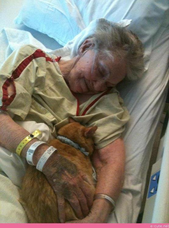 Old Lady with her cat...