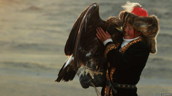 13 y/o Mongolian girl with her Eagle...Lots of love there  <3