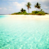 - Caribbean Blue.
