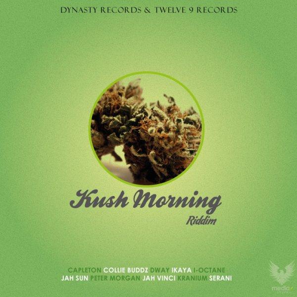 DJ isnak master mix / Kush Morning riddim Mégamix 2012 (2012)
