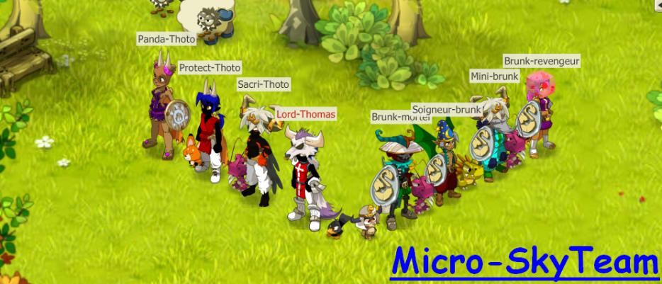 Bienvenue sur le blog de la MicroSkyTeam