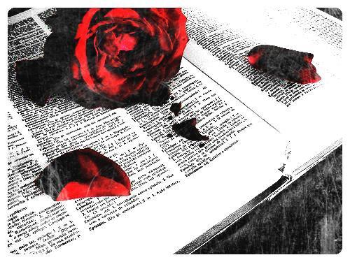 ✣ Sommaire des livres
