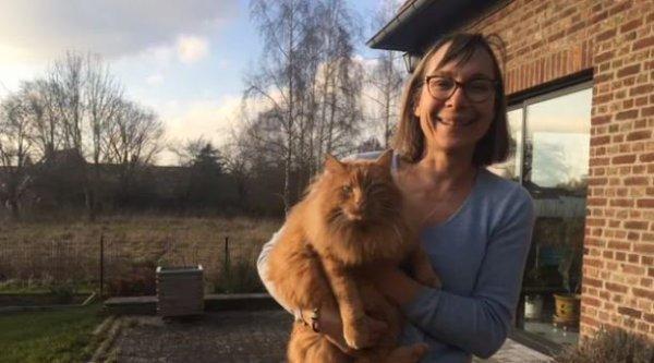 Perdu près d'Annecy, le chat revient chez lui, dans le NOrd... en BlaBlaCar