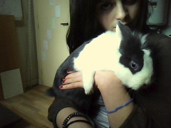 Hello (: Bienvenue sur le blog des lapins.♥