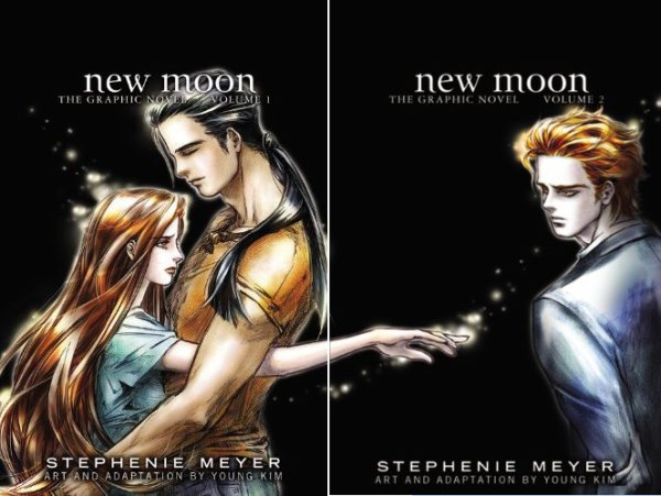 Le roman graphique : New Moon