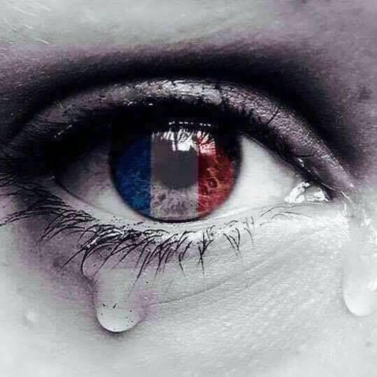 LA FRANCE A TERRE,
