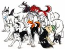 Photo de Bleach-Dogs