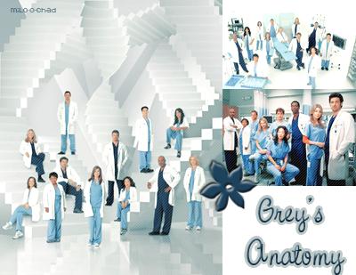 Grey's anatomy : sa série  PiX