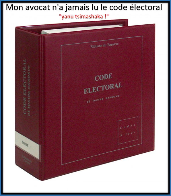 Publication des résultats par la CENI : Prématurée pour l'avocat Larifou, à l'extrême limite pour le code électoral