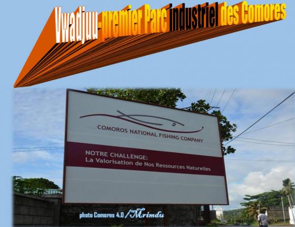 """"""" Vwadjuu '' le premier Parc industriel du pays : après la centrale électrique, l'usine de pêche prévu avant le 20 février"""