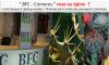 Citoyenneté économique, roses ou épines ? : La BFC, une autre épine géante dans le pied de l'ancien président Sambi