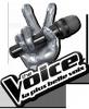 estimations-the-voice
