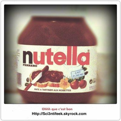 Dossier Nutrition Nutella