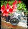 L-Aphotographyy35