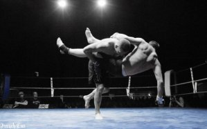 MMA ( mixed martial art ) autrement dit FREE FIGHT