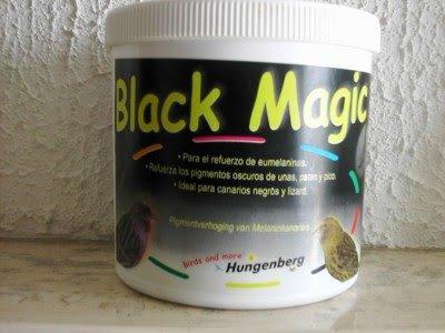 colorant noir pour canari
