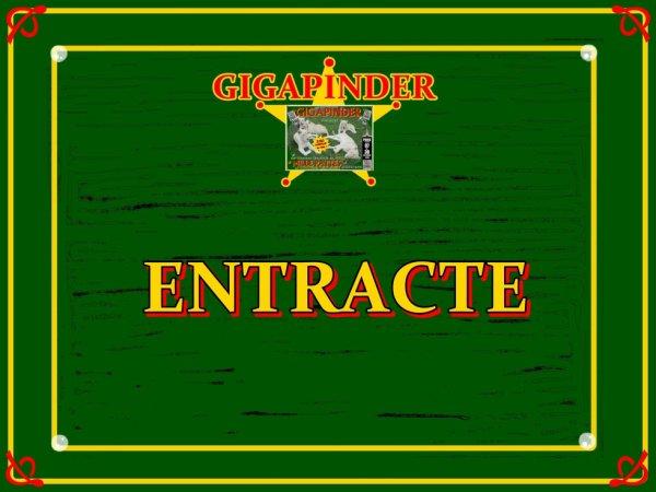 """GIGAPINDER ET SON SPECTACLE  """"MILLEPATTES""""  ENTRACTE"""