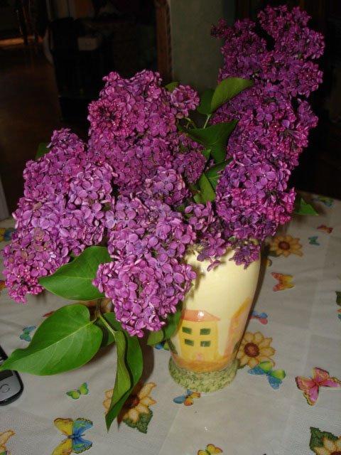 premier bouquet 2012 :)