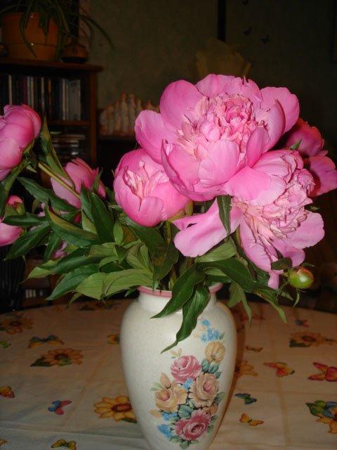 jolie bouquet de pivoine
