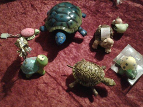 collection tortue :mes petite derniere noel 2014