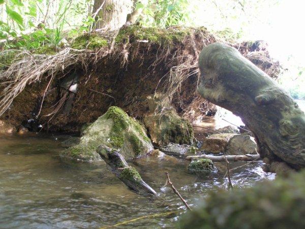 la belle petite cascade du tout petit ruisseau