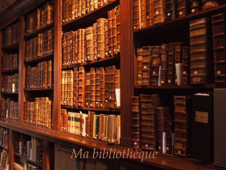Ma bibliothèque.