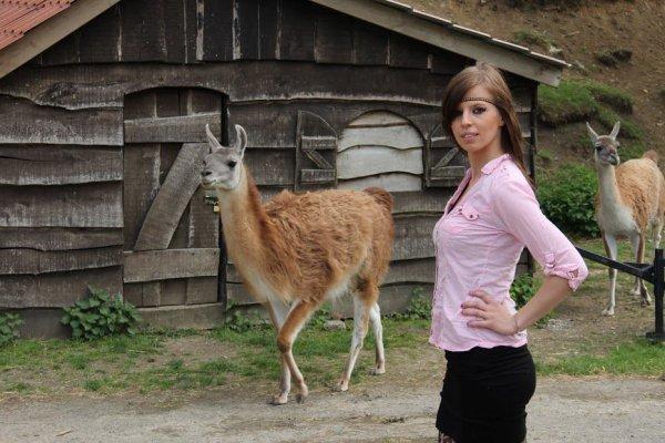 nouvelle journee au zoo de cerza