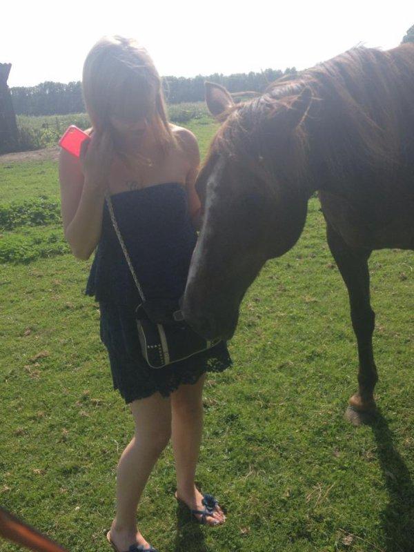 je suis la femme qui murmurait a l'oreille des chevaux