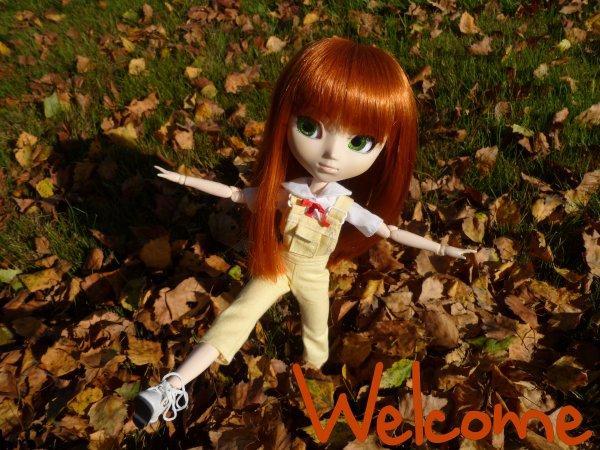 Bienvenue sur le blog~
