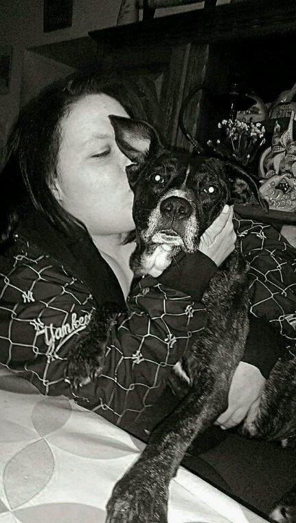 ❤ mon unique passion  les chiens j'en ferais mon métier ❤