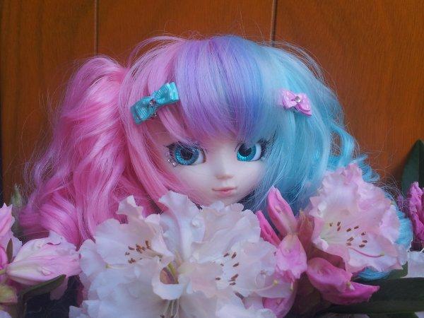 Des Filles & Des Fleurs [ o°]