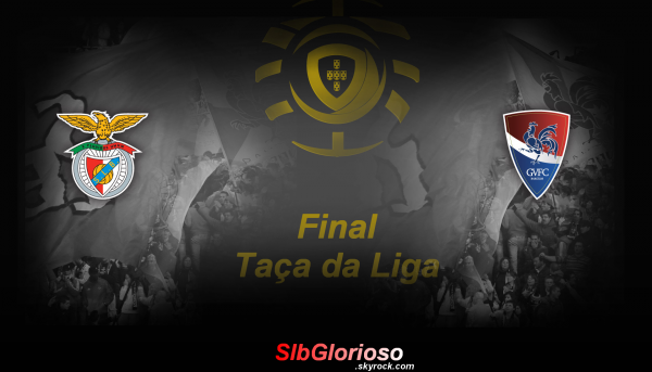 Taça da Liga 2011/2012 - Final Coupe de la Ligue 2011/2012 - Finale