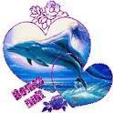 mes dauphin