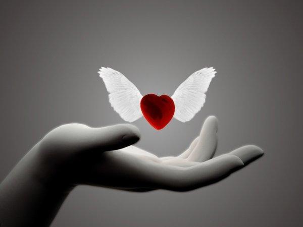 Pour toi mon Amour <3