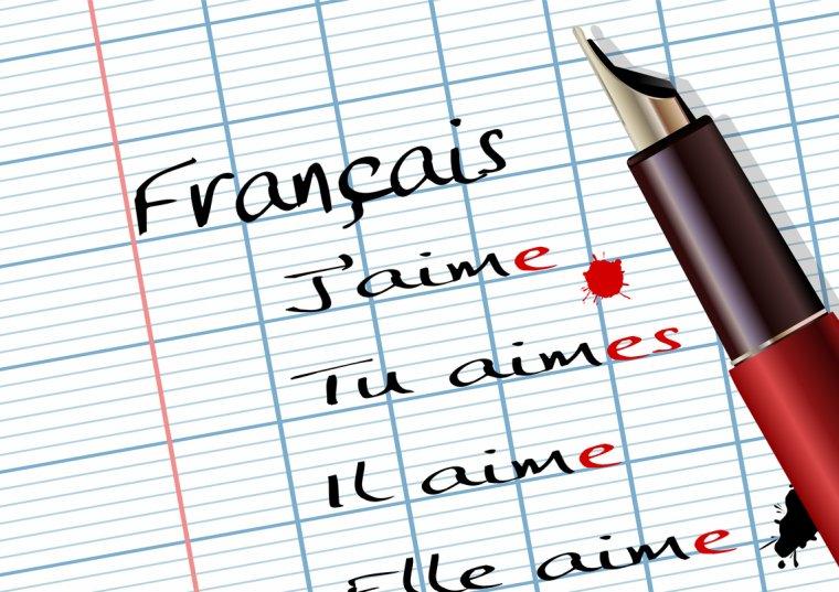 Hall of Fame 13: Français