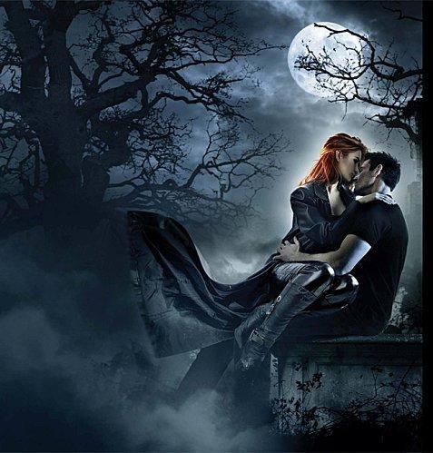 """Chapitre 5 : Chasseuse de la nuit • 4 volumes VF - 6 volumes sortis 9 prévu au total VO • """" Vous êtes où, les suceurs de sang? Petits, petits, petits ... """""""