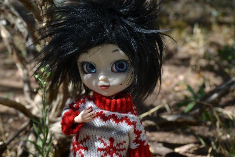 ♥ Présentations des poupées ♥