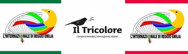 73° Internazionale Reggio Emilia Allevamento IL TRICOLORE