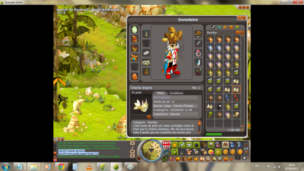 up de la guilde lvl 118