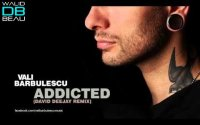 Vali BARBULESCU  /  ADDICTED (DAVID DEEJAY REMIX) (2011)