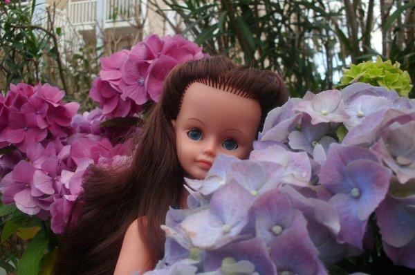 Cache- cache dans les Hortensias...