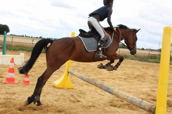 séance de sauts avec ma peluche ♥