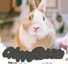 HappyRabbits
