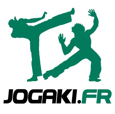 Cours de capoeira paris 75019 19eme enfants et adultes.