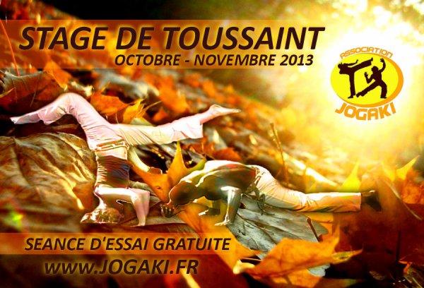 Stage Jogaki Capoeira Paris - Vacances de toussaint 2013 octobre novembre