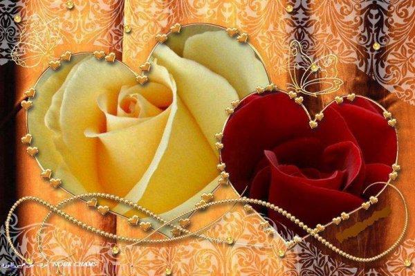 rose d'amour une rose d 'or poudre dans tes yeux brillant et