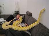 Voilà lorsqu'on aime vraiment un serpent