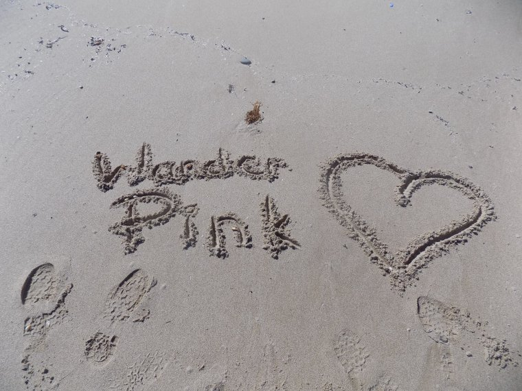 The end of the Wander Pink