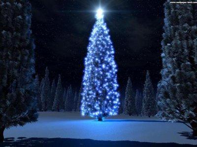 Bientôt Noël. Il me tarde Les Vacances :) ! <3 et vous ?