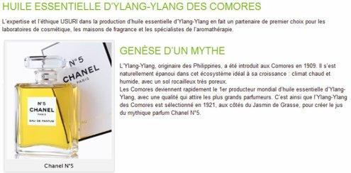 COMORES / Huile d'ylang : un chercheur pointe du doigt les méthodes de distillation